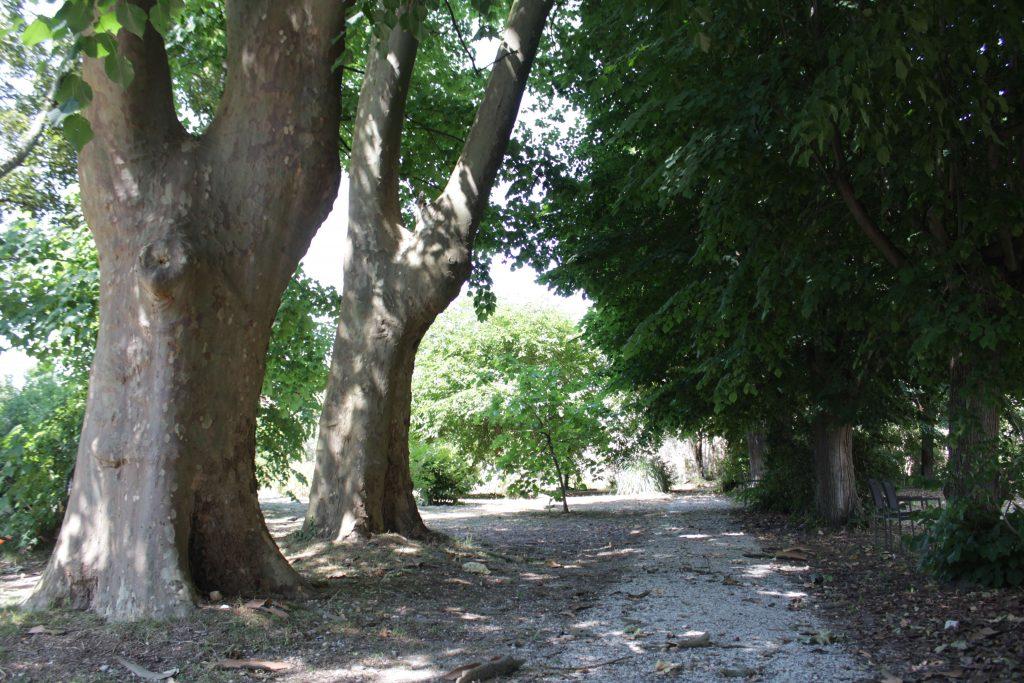 Le parc s'étend sur 1 hectare, en plein coeur de Bordeaux...